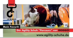 doggo-flyer-mit-web